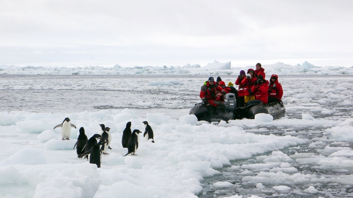 Top Antarctica Cruise Ships G Expedition G-Adventures