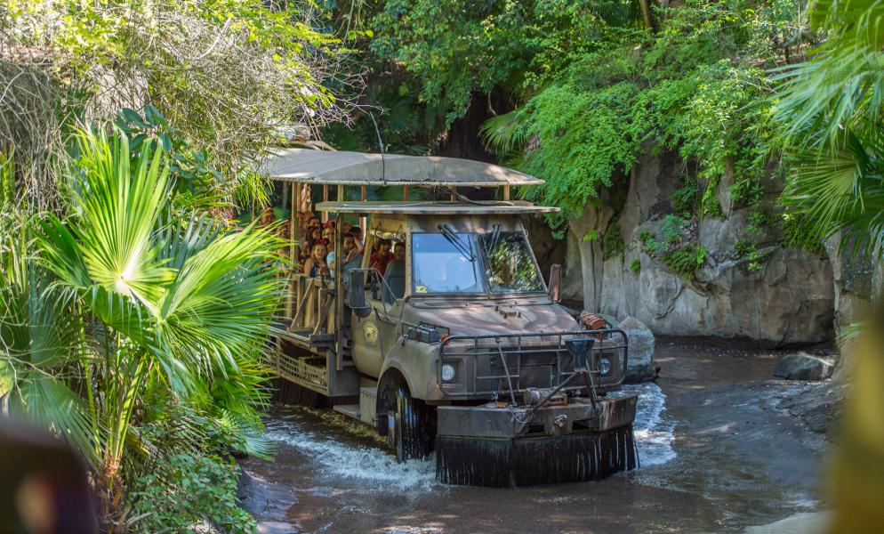 Disney World Florida: Animal Kingdom